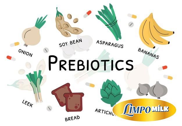 Prebiotic-la-gi